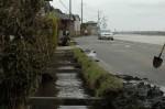 水路の泥上げです