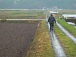 農道の法面なども見ます。冷たい雨が目に入ってよく見えません