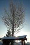 同じく2010/02/14雪の日のお地蔵さんの写真です