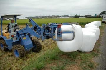 出来上がった飼料稲のサイレージを道路脇に並べていきます