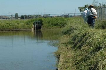 配水機場の調整池の周りの除草です。