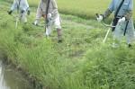 14:とにかく草刈り