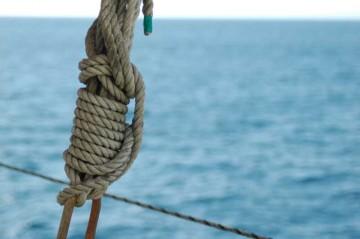 ロープも大好き。