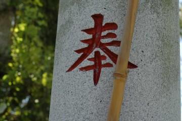 八坂神社祭礼の時の青竹は黄色くなっています。