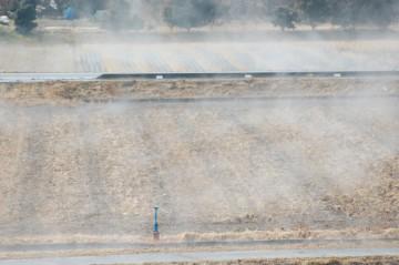 見ている間に、畑や道路、田んぼ、ありとあらゆるところからもうもうと・・・