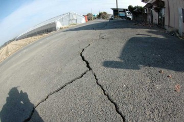 道路と敷地は地割れで縁が切れちゃってます。