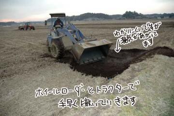 ホイールローダーとトラクターにつけた肥料散布機?で手早く田んぼに堆肥を撒いていきます。