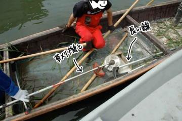 道具は柄の長い鎌と草刈り機。不安定な船の上で慎重に作業します。