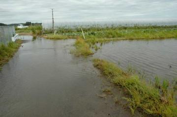 田んぼから道路へ水が流れています