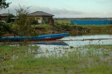 川はもっと低い位置で、いつもは水も船も見えないんですけど、水面がつら位置に見えます。なんだか向こう岸がすごく近くなったように見えます。