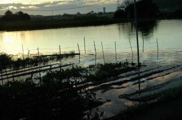 畑と川がつながり始めています