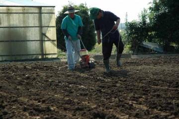 種まきごんべえで蕎麦の種を蒔く