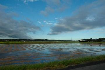 9月22日 7時2分 田んぼにずいぶん水が入っています