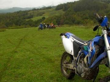 コース保守中は素敵な牧草地も・・・