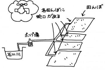 各自の田んぼに川から水を配るパイプライン その末端には蛇口があります