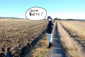農地の点検