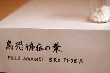 鳥恐怖症の薬