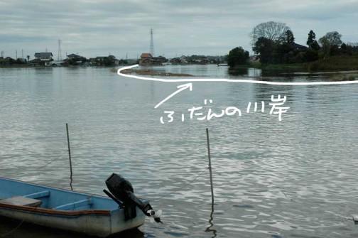 昨日は涸沼川も溢れちゃってます