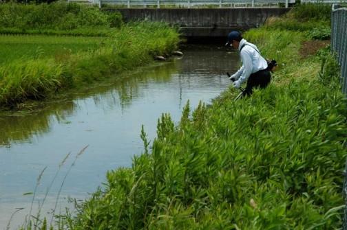 農地・水保全管理支払交付金 水路法面の草刈り