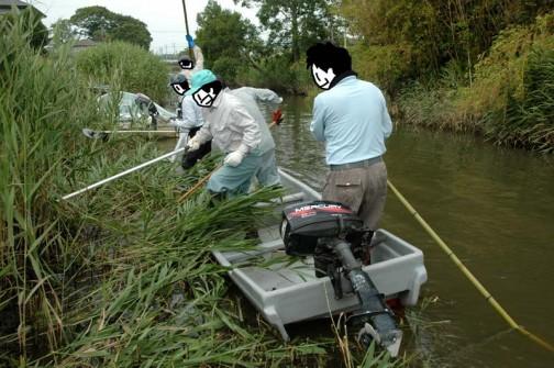 揺れる船の上での草刈はなかなか難しいです。