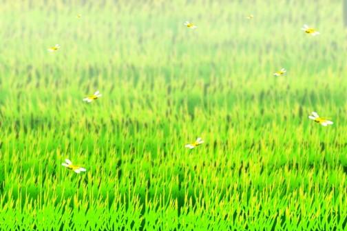 うまく写真に撮れないので描いちゃいました。逆光にトンボの羽根がオレンジに光って見えます。夕方になると田んぼの上をたくさん飛び回っています。
