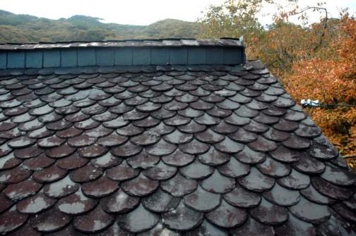 スレート屋根と紅葉