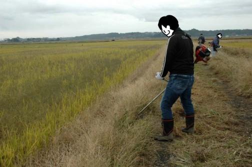 農用地法面の草刈