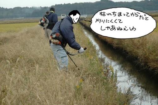 水路の草刈