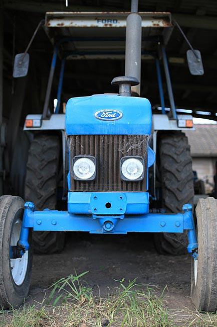 こちらはフォード5030だそうです。ちょっと丸顔