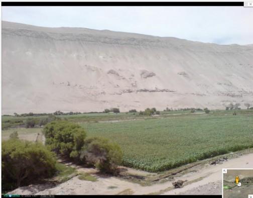 今にも背後の砂山に飲み込まれそう・・・田んぼだと思われたのはトウモロコシ??