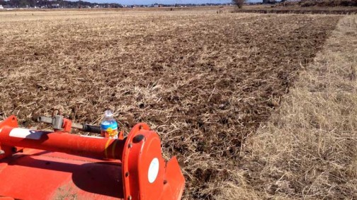 今年も始まりましたねぇ・・・写真はいつもの飼料稲の田んぼです。