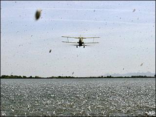 エアプレーンシーディングairplane seedingですって!