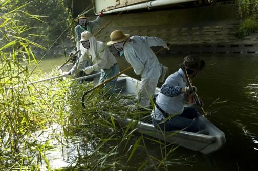 水際の草刈は船で・・・