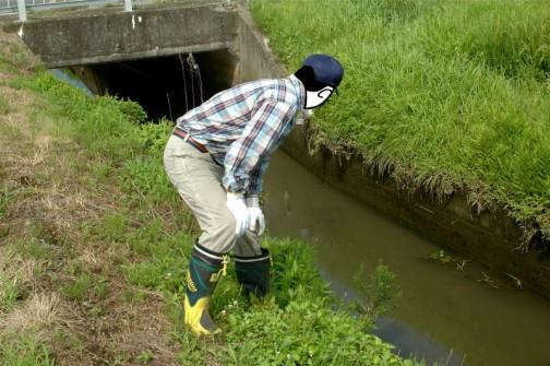 水路の点検