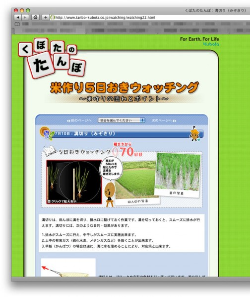 くぼたの田んぼWEBサイト よくできてます。http://www.tanbo-kubota.co.jp/watching/ 夏休みの自由研究にもいいね!