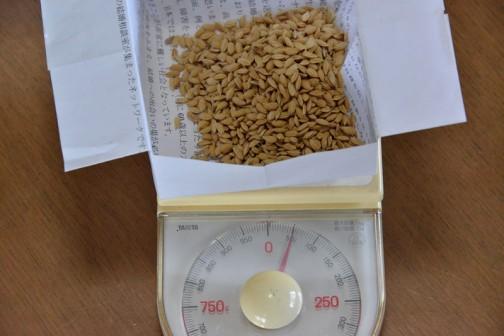秤で量っても(袋の重さは補正済み)合わせて50グラム強とほぼ同じ。