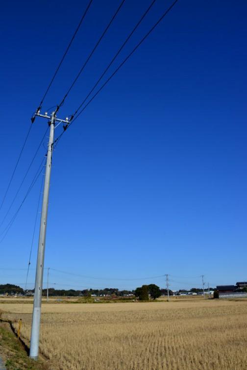 空が青いなあ・・・