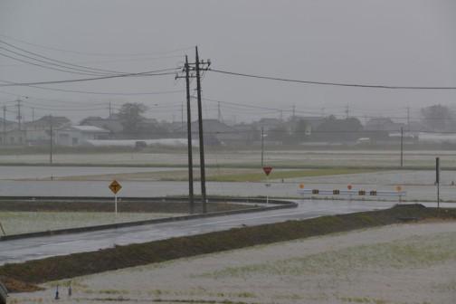 10/26日、台風26号の影響で雨ザーザーの時の画像。水路も田んぼも見分けがつかなくなっています。