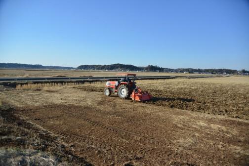 飼料稲の田んぼ、堆肥が撒かれてからの荒起こしの様子