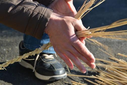 この縄ですが、結構固いんです。多分ロープとして使うのなら原料の稲藁の時点で、これでもかってくらいバンバン叩いて柔らかくしないとダメなんでしょうね。
