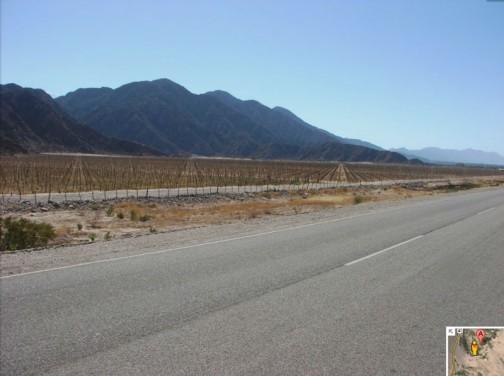 両側を山に囲まれた平らな部分です。ブドウ畑を見ながら、真っすぐ北へ行かされます。