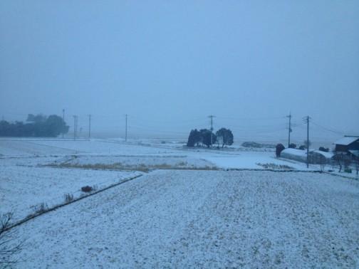 2月8日、朝6時40分。もう雪が積もっています。