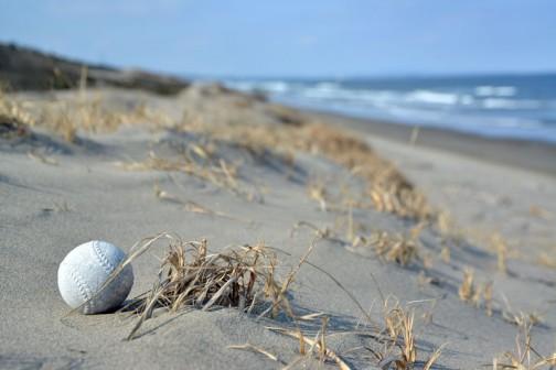 砂丘の上になぜか野球のボール。どこから飛んできたのでしょう? おまけに下から上へ転がった跡がついています。