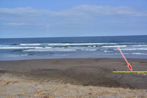 以前は黄色線のテトラあたりまで砂丘がありました。潮の満ち引きにもよりますが、砂浜はもっと沖へ伸びていました。もう10M〜15Mは引っ込んでしまったのではないでしょうか?
