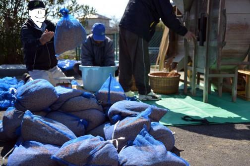 常澄産コシヒカリ/飼料稲の生産 水戸市大場町島地区生産組合 年代物の唐箕