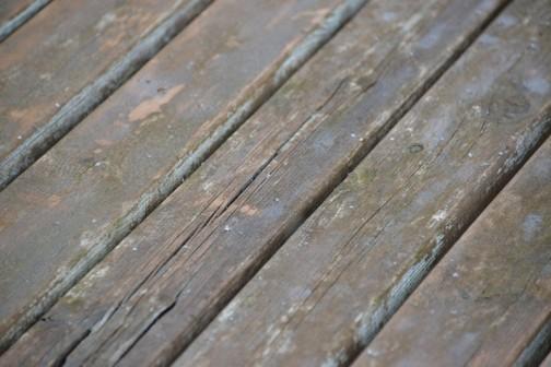 4/6日、降り始めは5ミリくらいの雹。カメラを取り出した頃には小さくなって雨まじり。その後すぐに雨に変わりました。寒かったなあ・・・