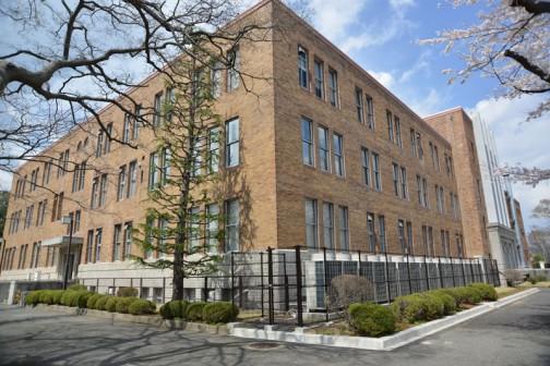 茨城県旧県庁舎の桜・・・ズンズン奥へ入っていきます