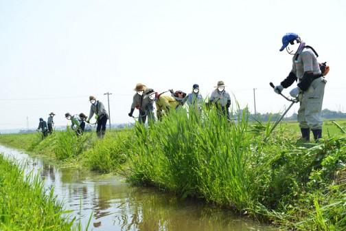 大場町島地区農地・水・環境保全会の活動
