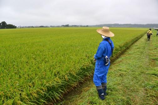 更に踵を返して今度は農地の点検写真。「遊休農地はないかねえ」毎回ほぼ同じところで撮っています。見返してみると、季節の移り変わりやその時の天候がよくわかります。逆に言うとそういうところを見られて、ちゃんとやってるかどうか確認されるのでしょうねえ。