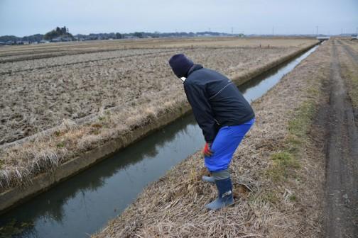 ちょっと横移動して水路の点検。
